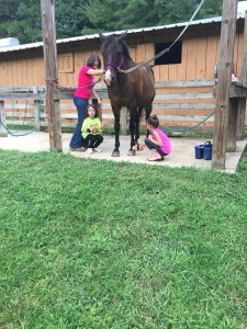 Lambert Stables Outdoor Wash Racks   Winston, GA