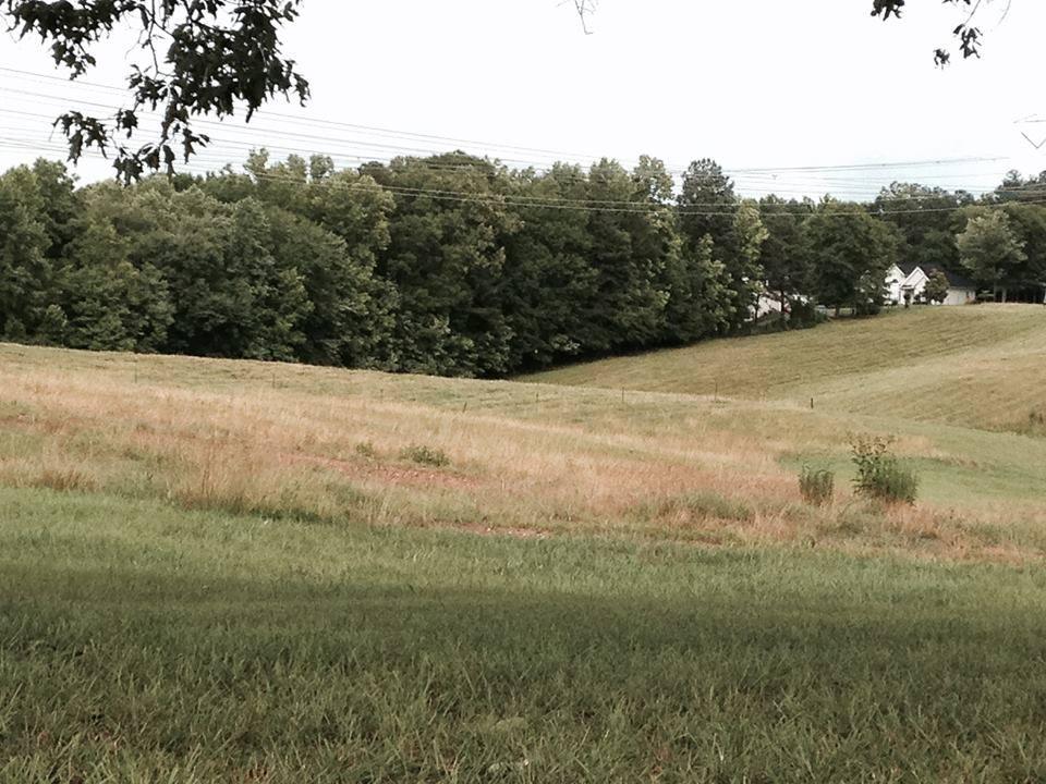 Lambert Stables Turnout Pastures   Winston, GA